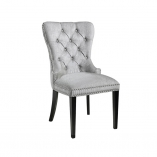 Euphoria-Dining-Chair-Elizabeth-Platinum-Main-ws-1